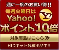 円高還元送料無料!